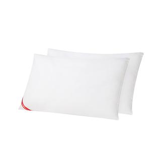ABS经典款枕芯(对装)