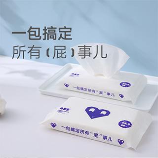 Lanny净润卫生湿厕纸(40片)